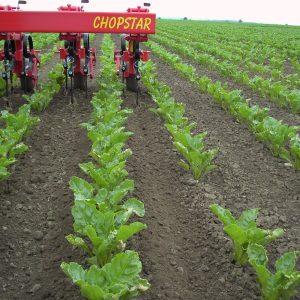 chopstar 160 20131006 1940481411 300x300 - Einboeck Chopstar