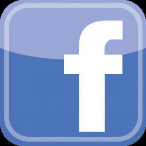 facebook logo1 300x300 - Vin Rowe Facebook Page